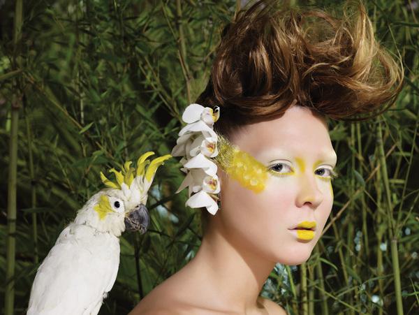 Прическа райская птичка